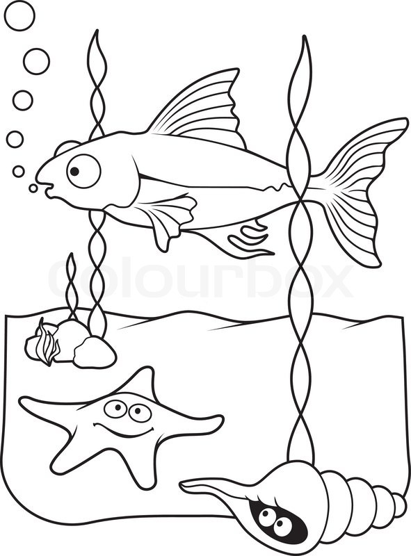 Underwater Scene With Fish Starfish And Shell Cartoons Line Art For Coloring Book Page