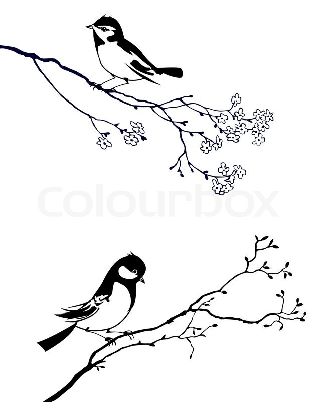 Stock image of 'Silhouette of the bird on branch tree'