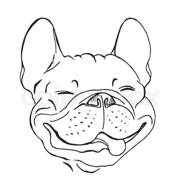 French bulldog, portrait, happy dog face, sketch, black and white ...