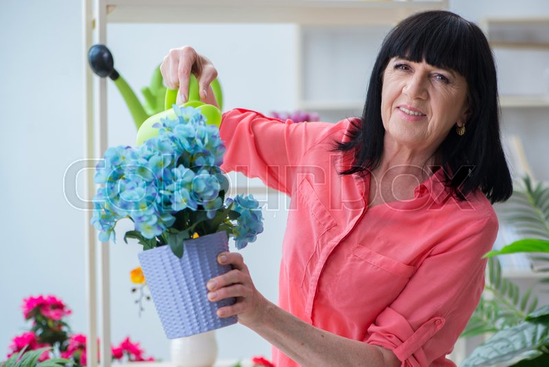 Woman florist working in the flower shop, stock photo