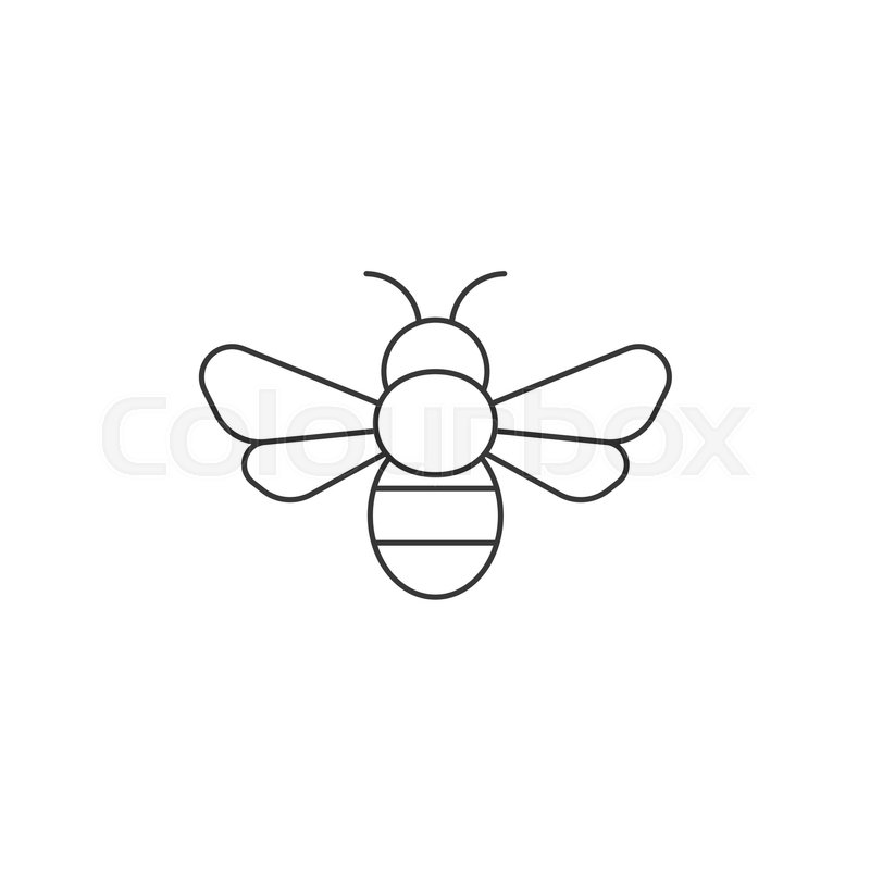 simple bee icon outline icon vector - Simple Outline Pictures