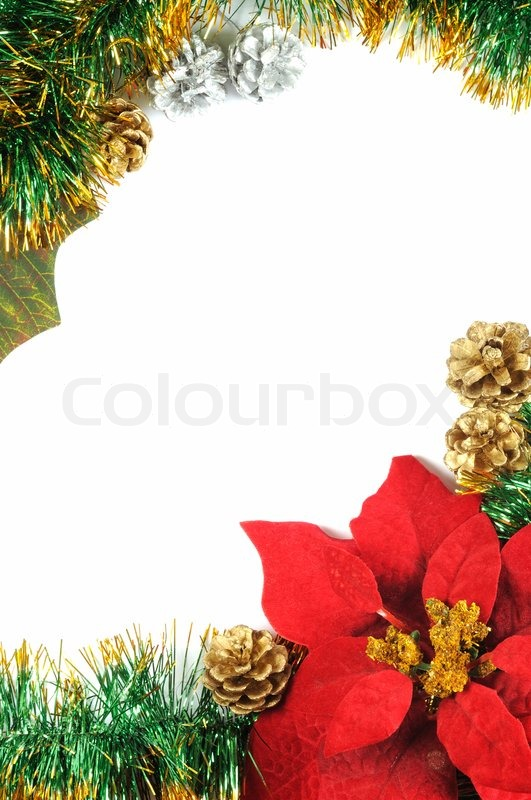 Christmas frame with poinsettia flower and copy space for Poinsettia christmas tree frame