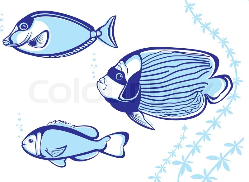Vector Of Tropical Fish Illustration On White Background