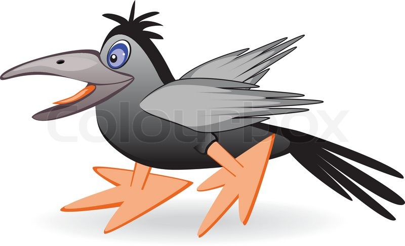 Die schwarzen vogel