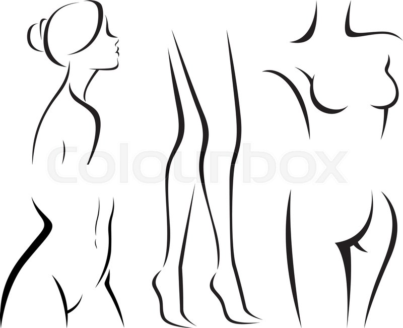 Set Of Elements The Body Women Beauty Vector Illustration