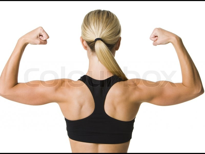 Las esferas del poder, William C. Gordon (Samuel Hamilton, 5) 2851189-muscles-of-a-woman-s-back-on-white-background