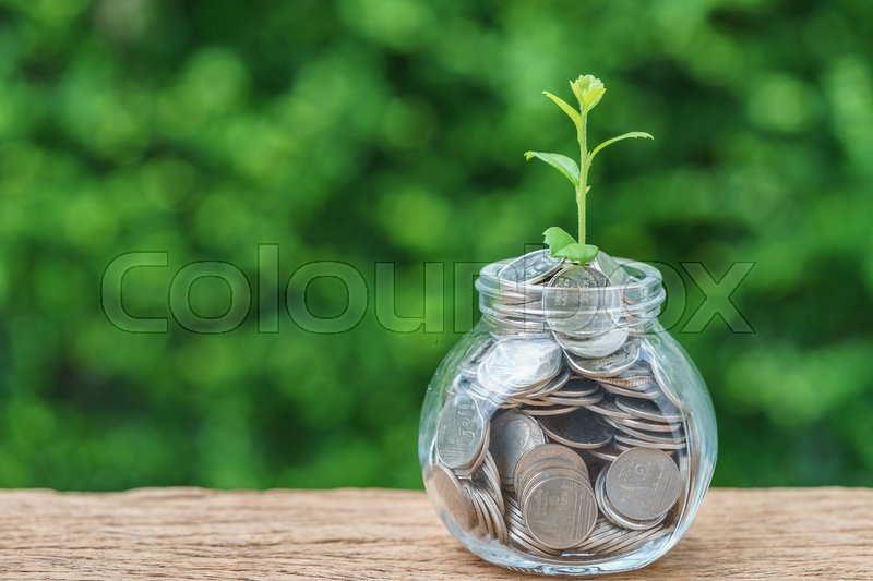 Selective focus on green sprout plant on jar with full of coins as growth finance investment concept, stock photo