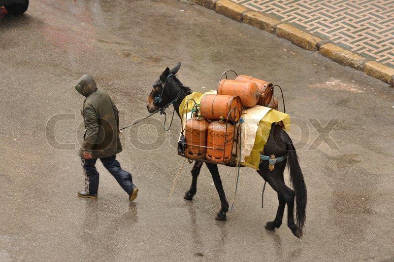 gasflaschen transport in fes marokko stockfoto colourbox. Black Bedroom Furniture Sets. Home Design Ideas
