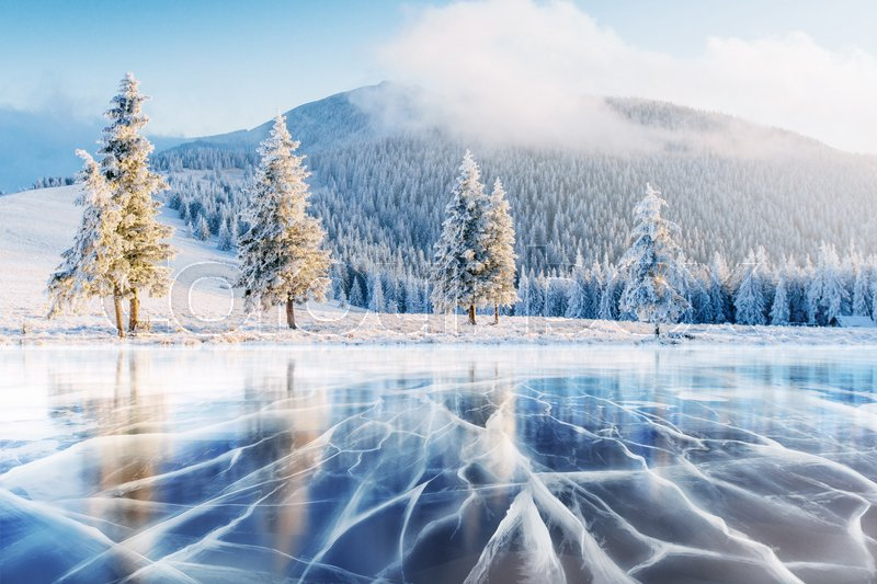 Blue ice and cracks on the surface of the ice. Frozen lake under a blue sky in the winter. The hills of pines. Winter. Carpathian Ukraine Europe, stock photo