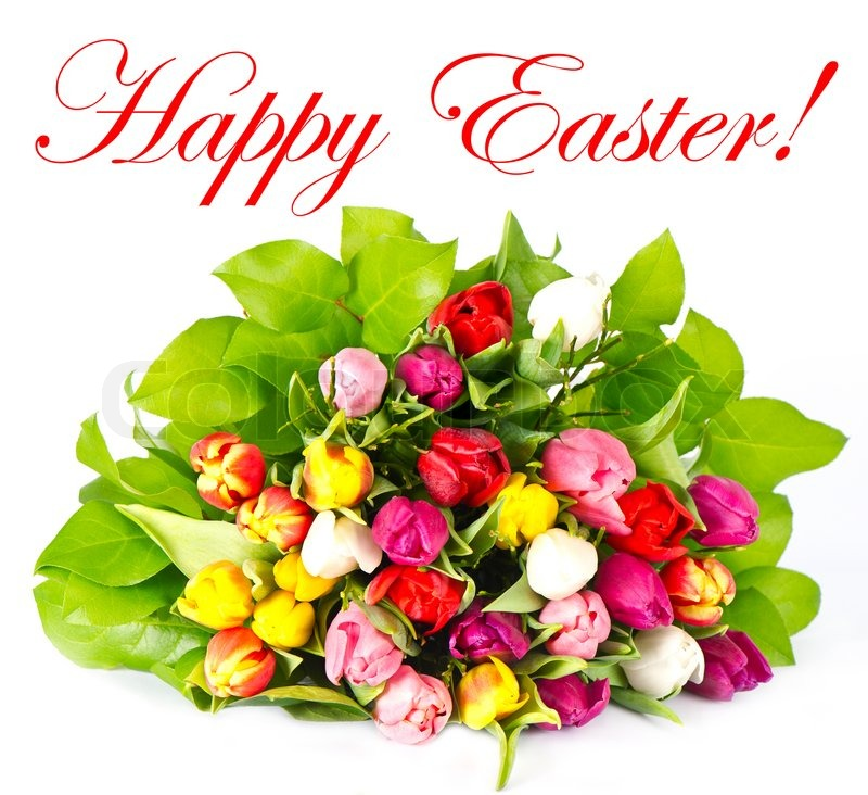Happy Easter! bouquet of fresh assorted tulips | Stock ...