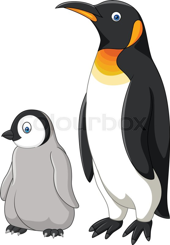 vector illustration of cartoon mother and baby penguin isolated on