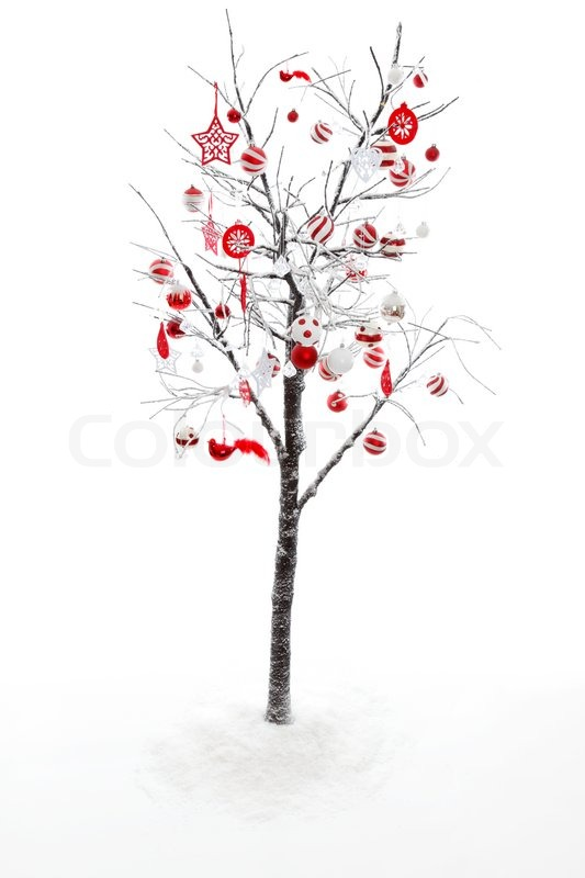 snow covered branches and twigs of a deciduous tree is decorated with red and white christmas baubles stock photo colourbox - White Twig Christmas Tree
