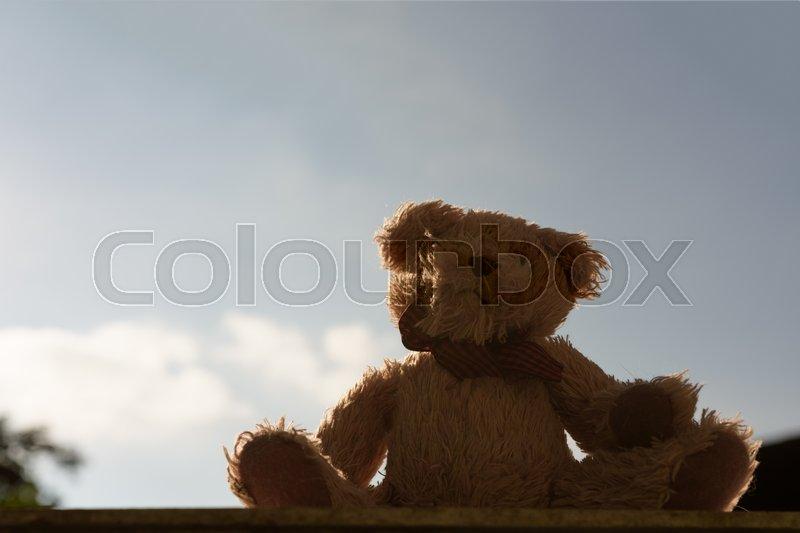 Single teddy bear with blue sky background, stock photo