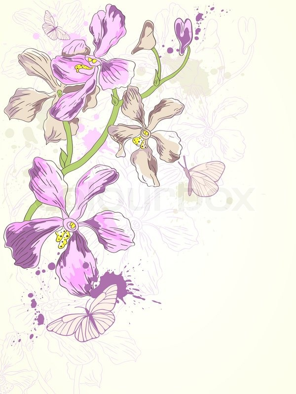 Orchid Tree Drawing Hand Drawn Violet Orchids