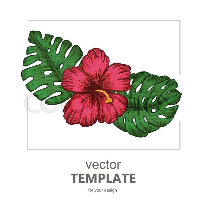 Tropical background with tropical leaves and flowers. Exotic Vector party flyer design, vector