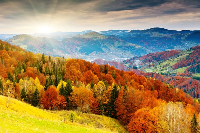 The Mountain Autumn Landscape With Colorful Forest Stock