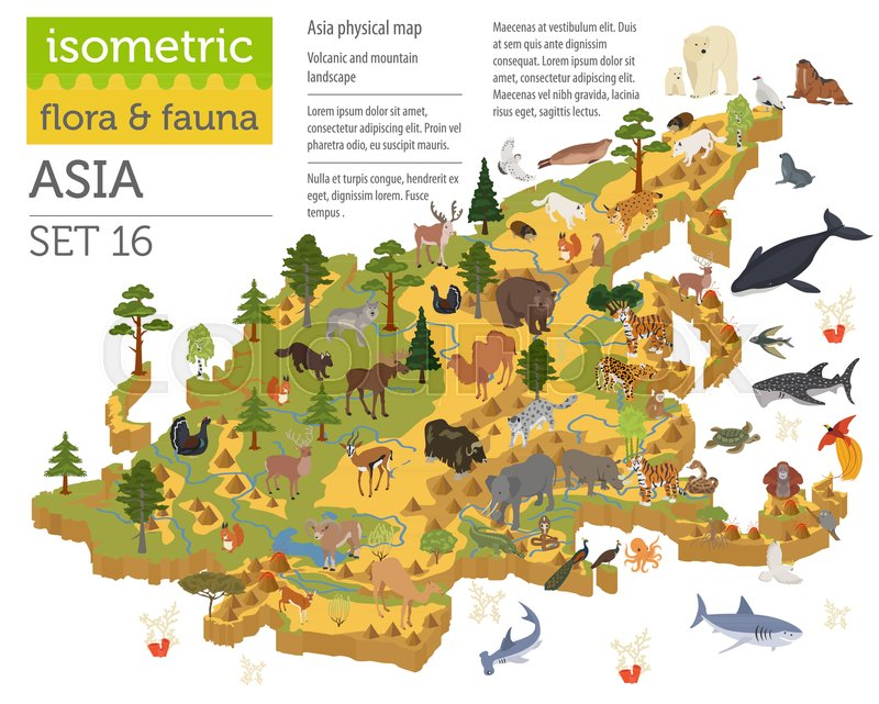 isometric 3d asian flora and fauna map constructor elements animals birds and sea life isolated on white big set build your own geography infographics