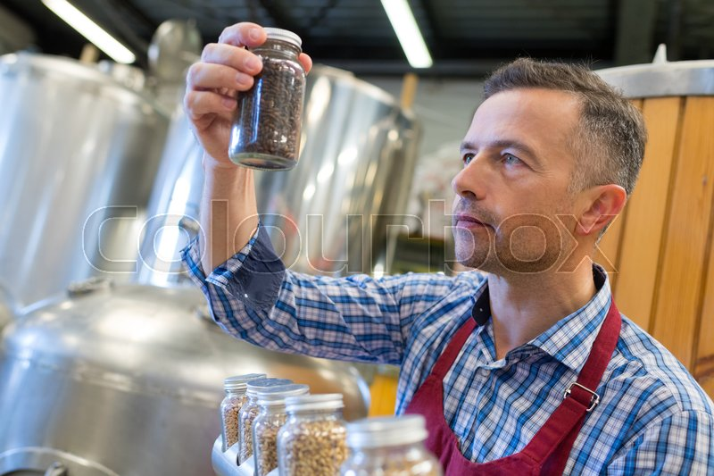 Brewery holding keg and testing beer at brewery factory, stock photo