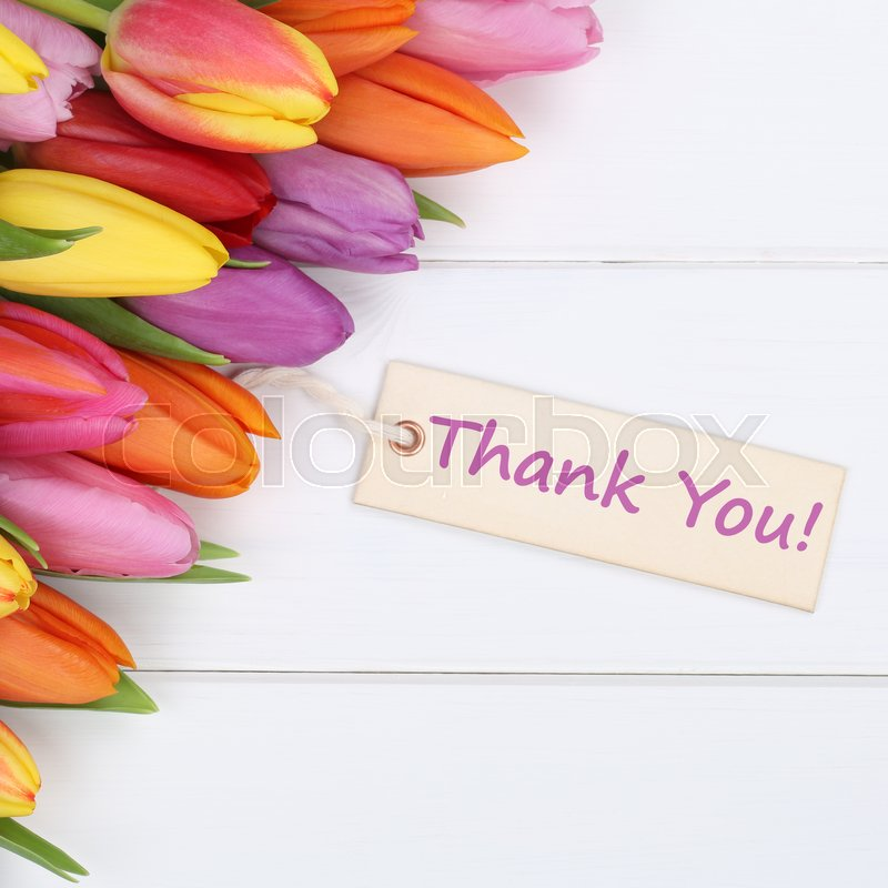 The words Thank You with tulips flowers as a gift, stock photo