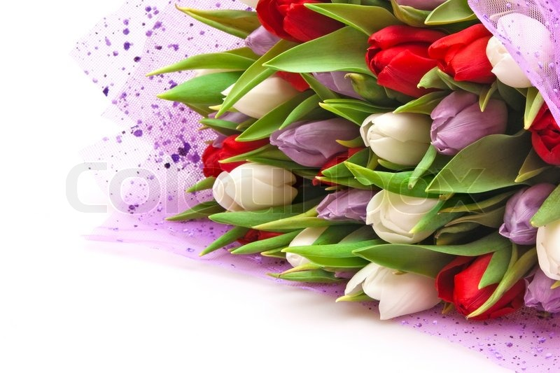 Beautiful Bouquet Of Tulips Isolated On White