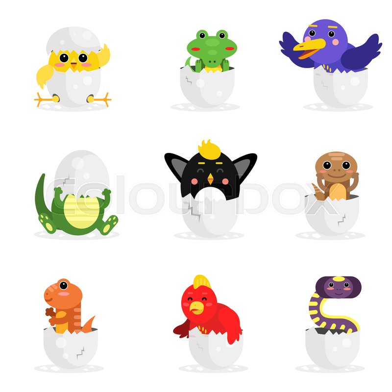 Cute adorable colorful newborn animal characters set, funny reptile and birds in egg shell cartoon vector Illustration on a white background, vector