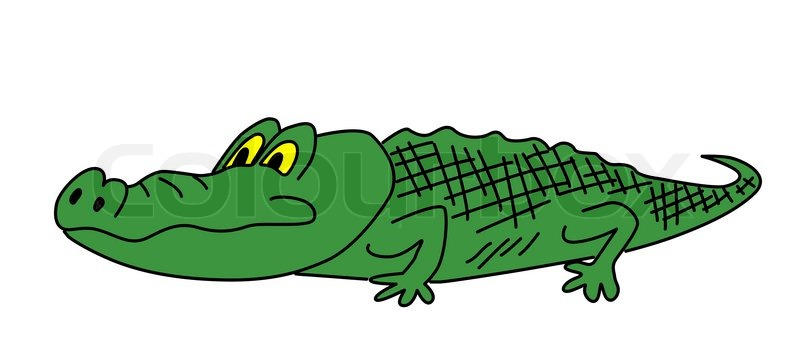 drawing green crocodile on white background stock photo