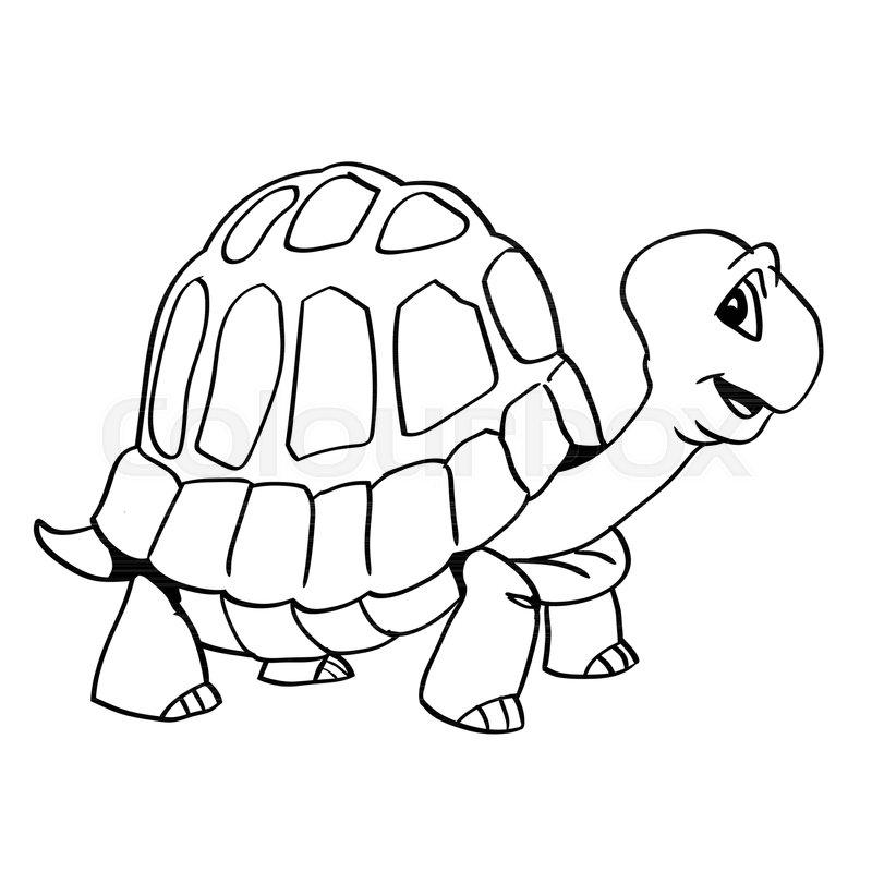 Line Art Turtle : Skildpadde ødemark samling stock vektor colourbox