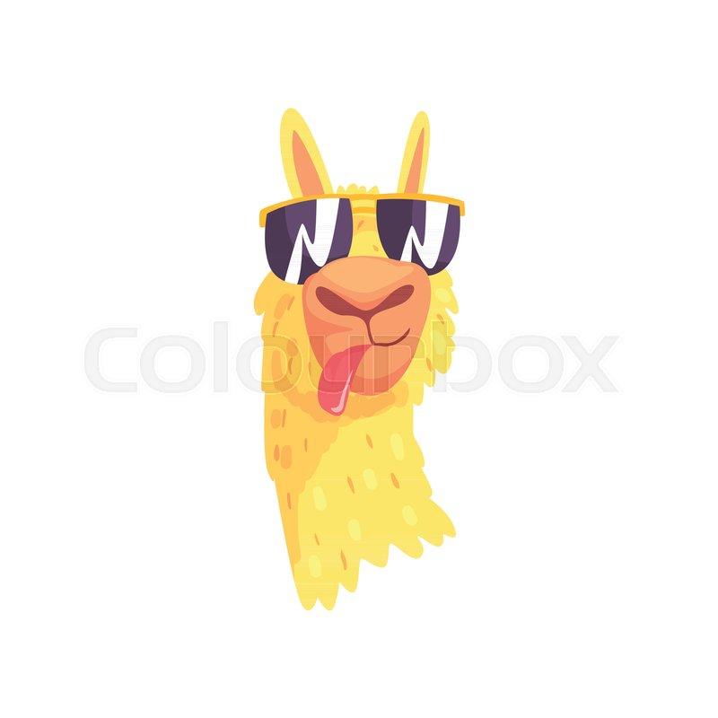 funny llama character in sunglasses, cute alpaca animal cartoon