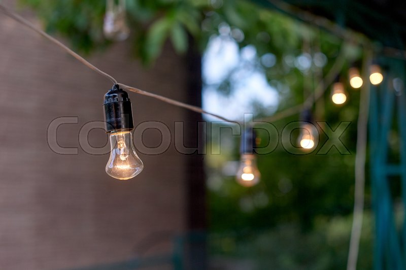 Decorative outdoor string lights hanging on tree in the garden in evening time, stock photo