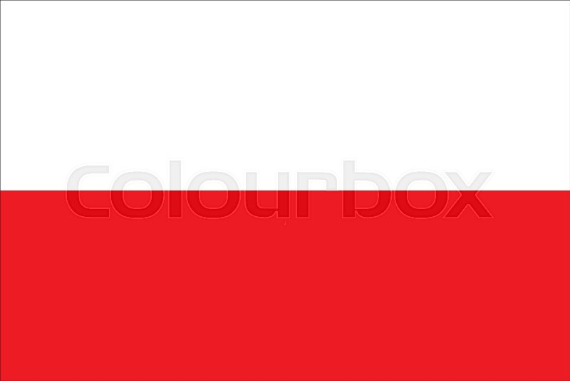 poland flag vector illustration poland flag national flag of