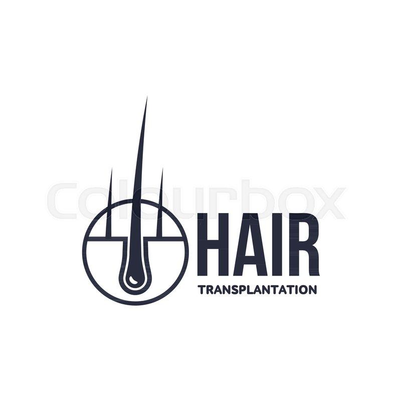 Ideal Hair follicle in hair bulb with human skin, dermis. Medical  MN89