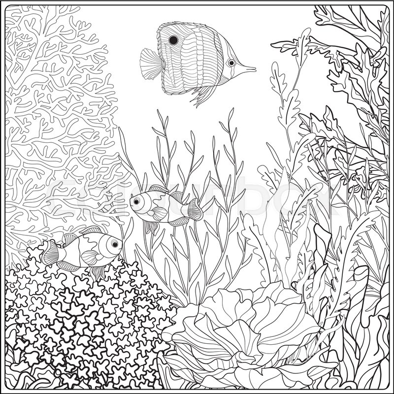 Adult Coloring Book Coloring Page Stock Vector Colourbox