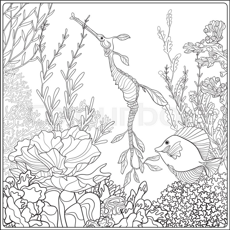- Adult Coloring Book. Coloring Page Stock Vector Colourbox