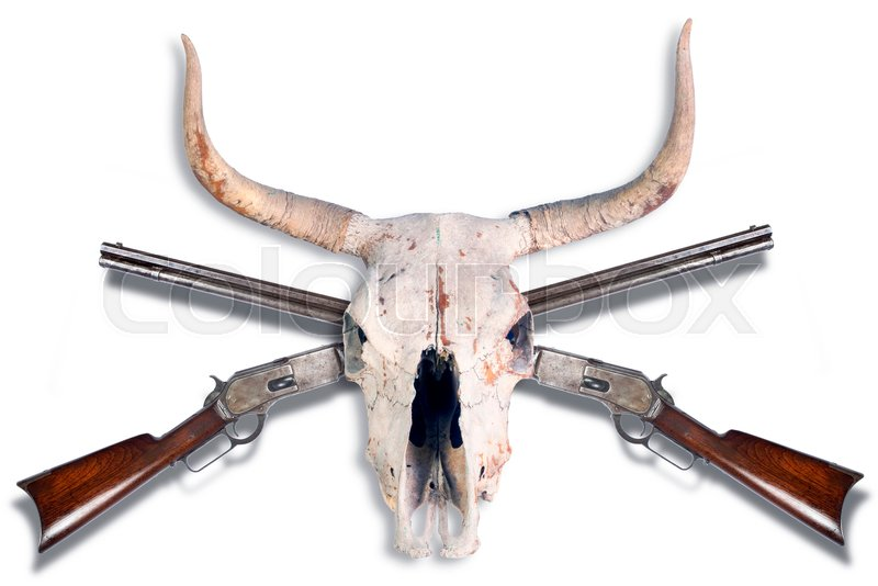 Antique Cowboy Lever Action Rifle And Cow Skull Stock Photo