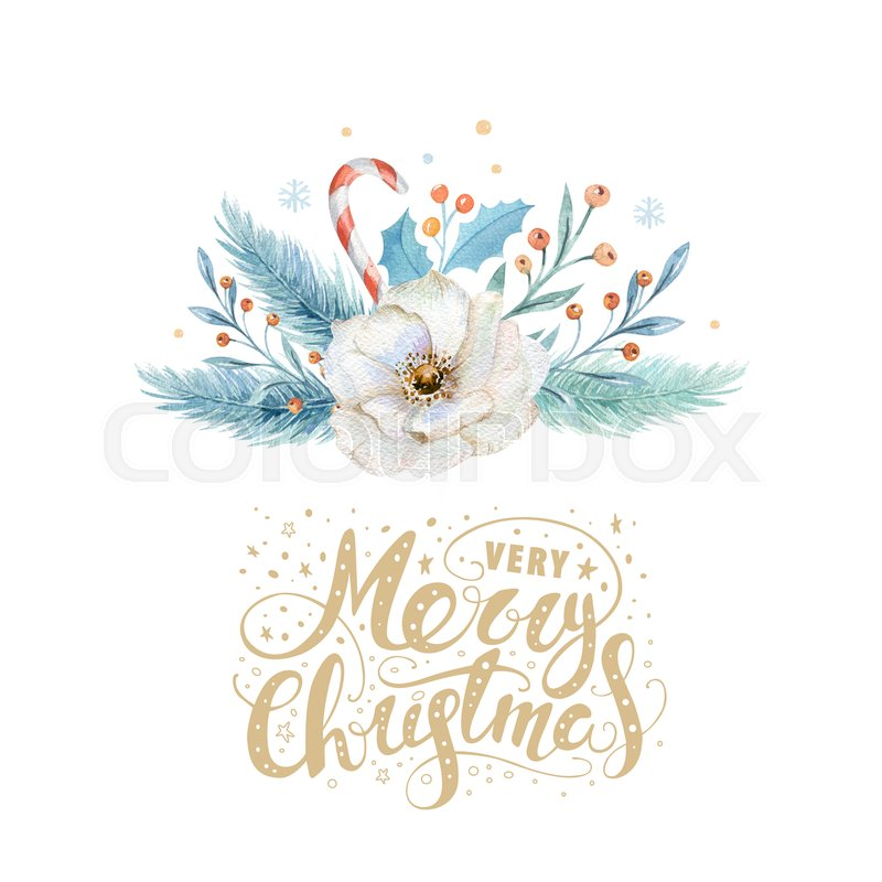 merry christmas watercolor cards with floral elements happy new year lettering posters winter flower and branch bouquets decoration