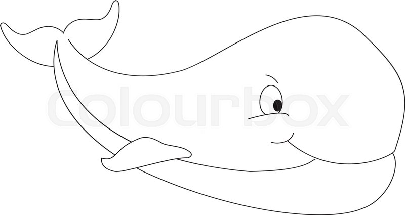 Coloring Book Line Artwork Whale Stock Vector Colourbox
