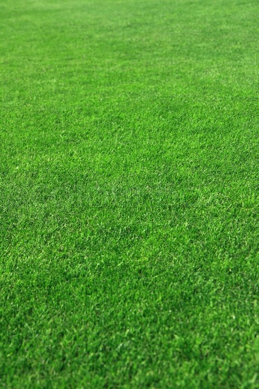 awesome golf course grass Part - 2: awesome golf course grass design ideas
