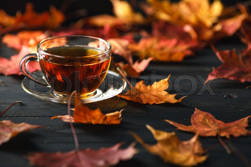 Fall season, leisure time and tea time concept, stock photo