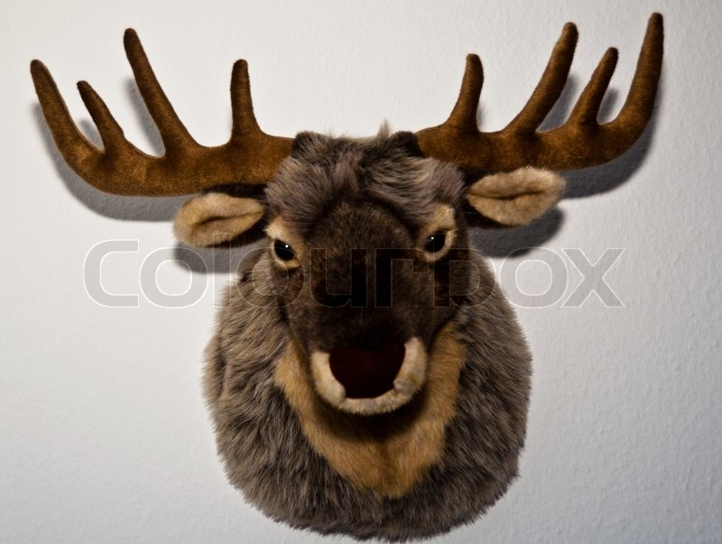 Stuffed Toy Deer Trophy Mounted On A Stock Photo Colourbox