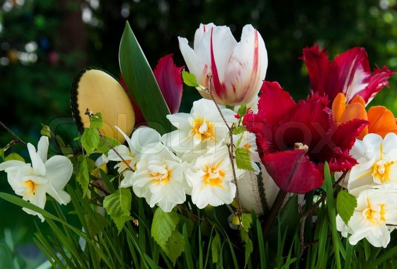 Bouquet of spring flowers daffodils and tulips with easter eggs bouquet of spring flowers daffodils and tulips with easter eggs stock photo colourbox mightylinksfo