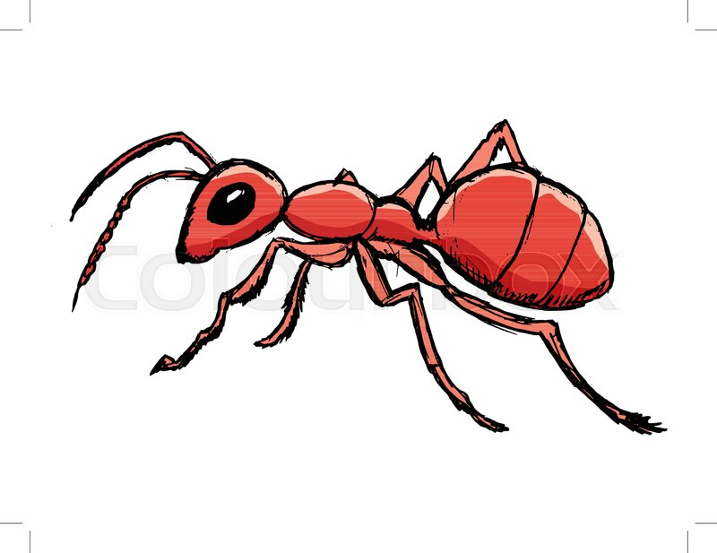 Vector, coloured, sketch, hand drawn image of red ant | Stock Vector ...