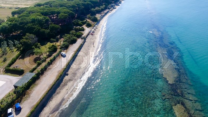 Overhead view of pinewood in front of ocean, stock photo