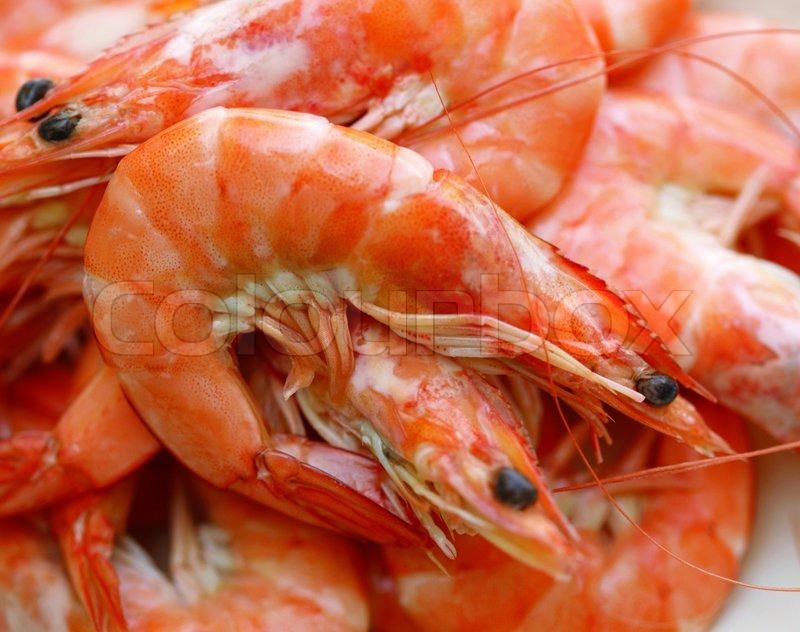 Supplier Shrimp Mail: Fresh Shrimp On A White