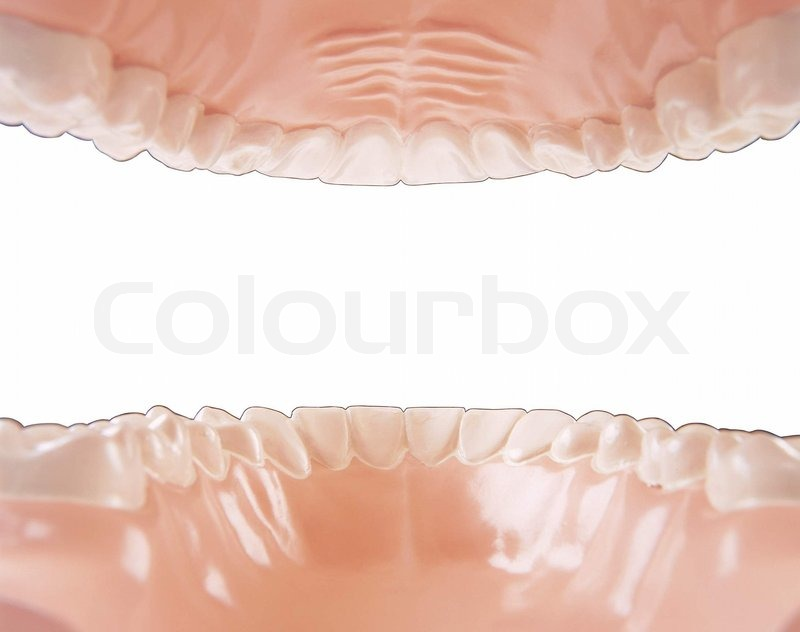 Mouth anatomy foto inside and on white | Stock Photo | Colourbox