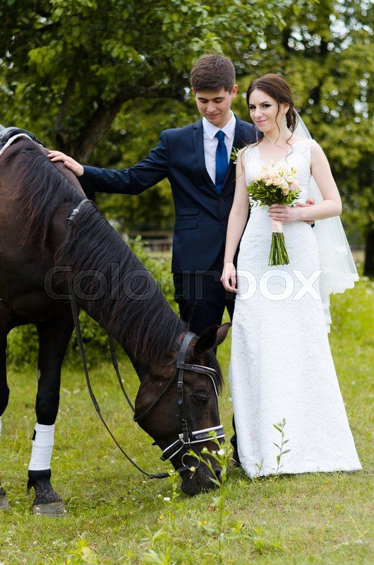 Bride and groom are standing in the park near the horse, wedding walk. White dress, happy couple with an animal. Green background, stock photo