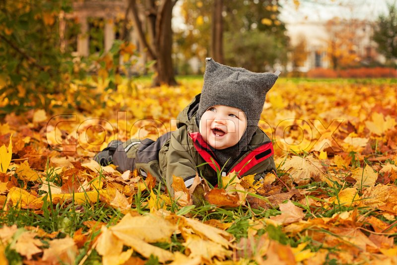 Autumn Baby Lying on Fall Maple Leaves Outdoors. Happy Little Child in Autumn Park (6 months old), stock photo