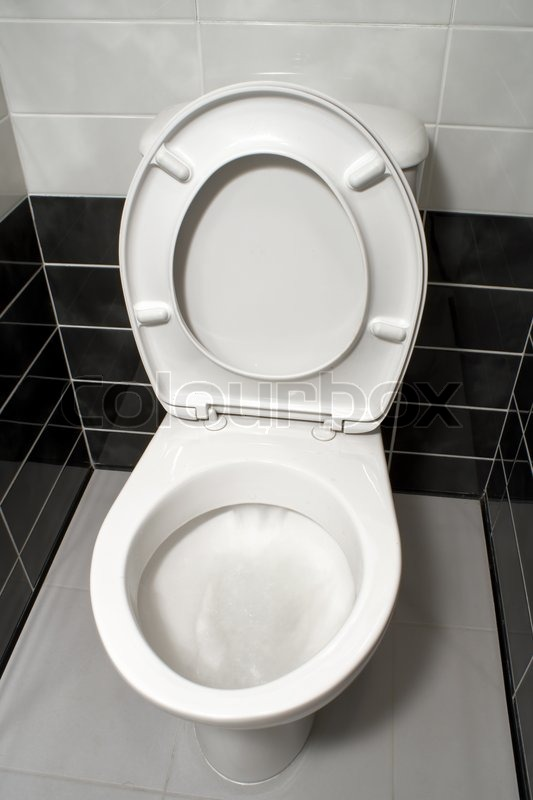 White Toilet With Black Seat. White toilet bowl with open seat cover  Stock Photo Colourbox
