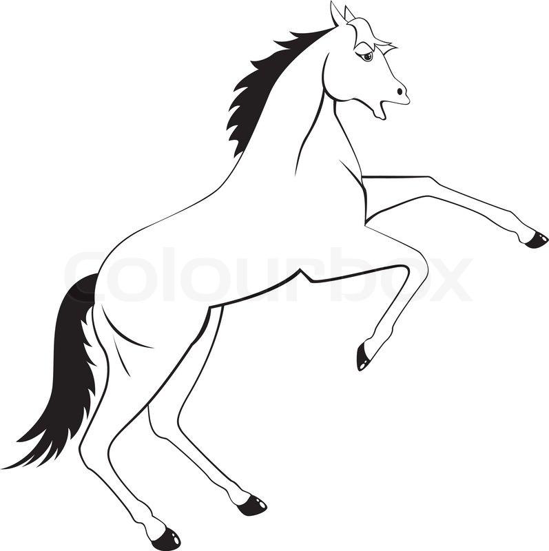 Vector Monochrome Illustration Of Cartoon Horse Reared Up