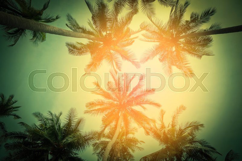 Stock image of 'Silhouette coconut palm trees on beach at sunset. Vintage tone.'