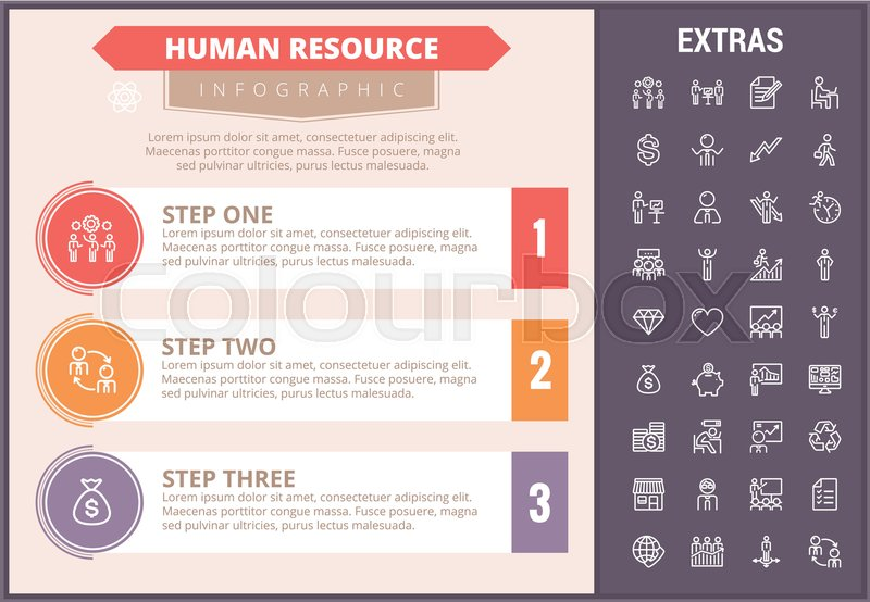 human resource infographic timeline template, elements and iconshuman resource infographic timeline template, elements and icons infograph includes step number options, line icon set with human resources manager,